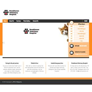 Brookhaven: Veterinary Hospital